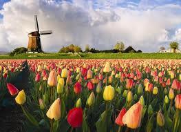 Czerwcowy weekend w Holandii za 38zł.