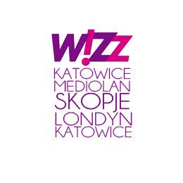 Wizzskladak ico