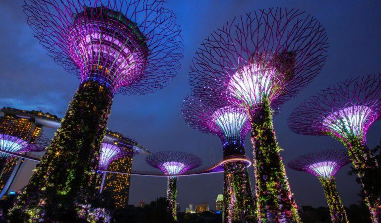 Tanie loty do Singapuru z Katowic z jedną przesiadką już za 2060 zł w dwie strony.